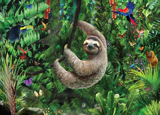Puzzle Sloth Cover Image