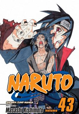 Naruto, Vol. 43 cover image
