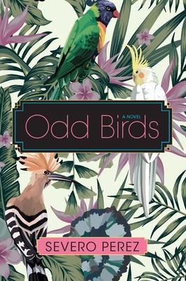 Odd Birds Cover Image