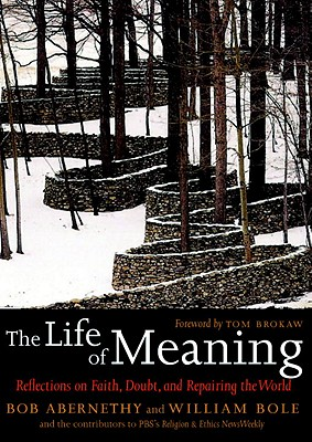 The Life of Meaning Cover