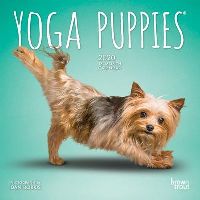 Yoga Puppies 2020 Mini 7x7 Cover Image