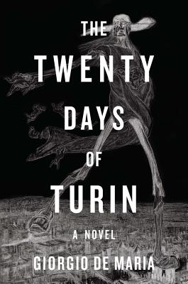 The Twenty Days of Turin: A Novel Cover Image