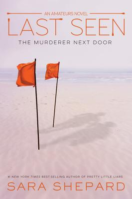 LAST SEEN (The Amateurs #3) Cover Image