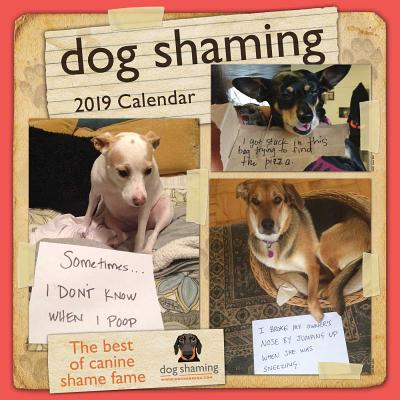 Dog Shaming 2019 Wall Calendar Cover Image