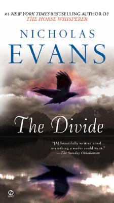 The Divide Cover