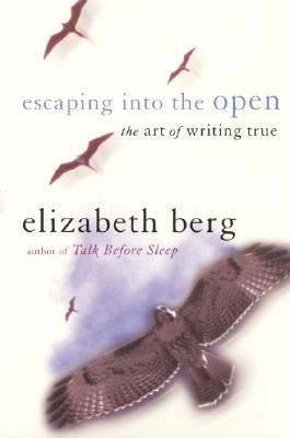 You Gotta Have Heart: The Art of Writing True Cover Image