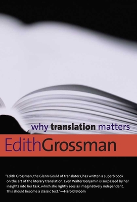 Why Translation Matters Cover