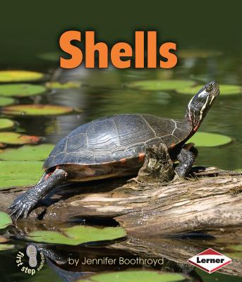 Shells (First Step Nonfiction) Cover Image