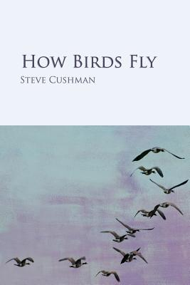 Cover for How Birds Fly
