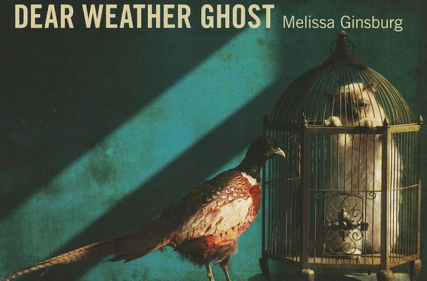 Dear Weather Ghost (Stahlecker Selections) Cover Image