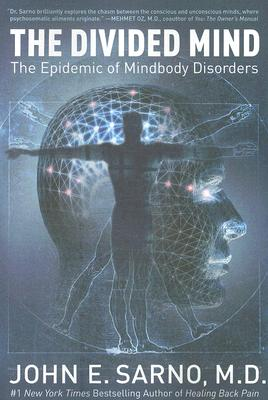 The Divided Mind: The Epidemic of Mindbody Disorders Cover Image