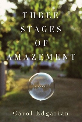 Three Stages of Amazement Cover Image