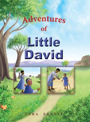 Adventures of Little David (Bible Adventures #1) Cover Image
