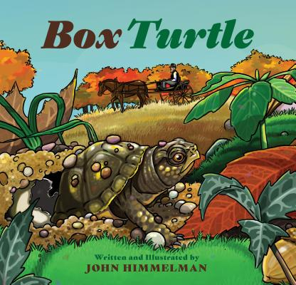 Box Turtle Cover Image