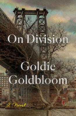 On Division: A Novel Cover Image