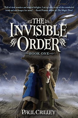 The Invisible Order, Book One Cover