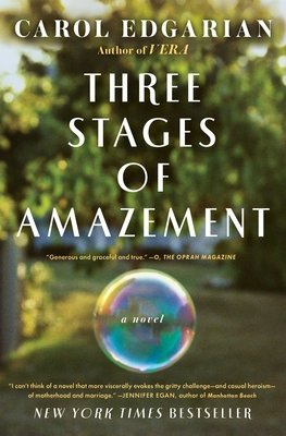 Three Stages of Amazement Cover