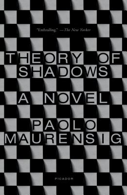 Theory of Shadows: A Novel Cover Image