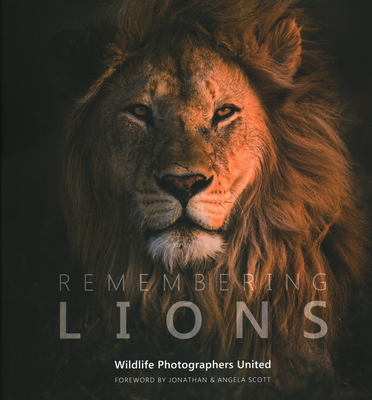 Remembering Lions Cover Image