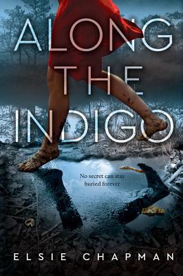 Cover for Along the Indigo