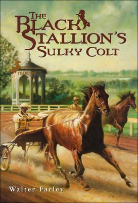 Cover for The Black Stallion's Sulky Colt