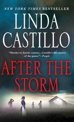 After the Storm: A Kate Burkholder Novel Cover Image