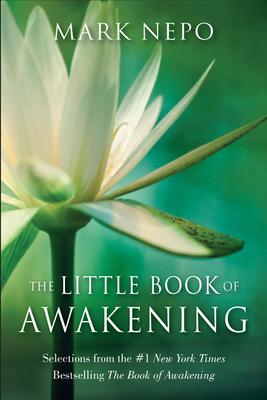 The Little Book of Awakening Cover
