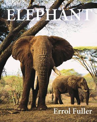Elephant Cover Image
