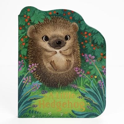 A Little Hedgehog Cover Image