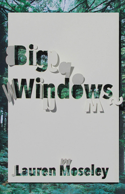Big Windows Cover Image
