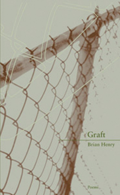 Cover for Graft