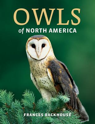Owls of North America Cover Image