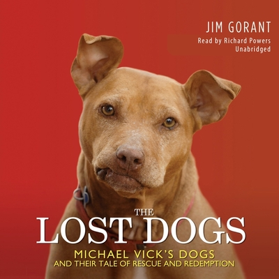 The Lost Dogs Cover