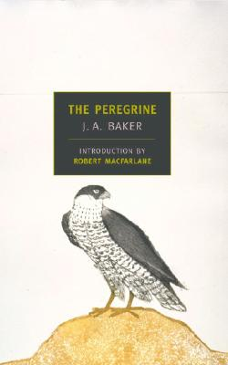 THE PEREGRINE, by J. A. Baker