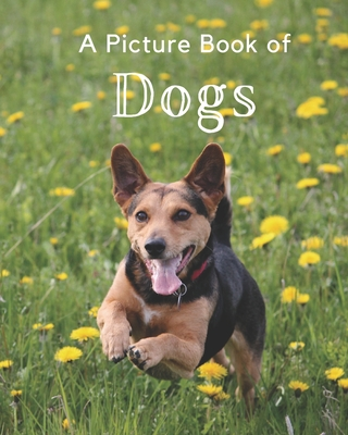 A Picture Book of Dogs: A Beautiful Picture Book for Seniors With Alzheimer's or Dementia. Makes a Great Gift For Dog Lovers! Cover Image
