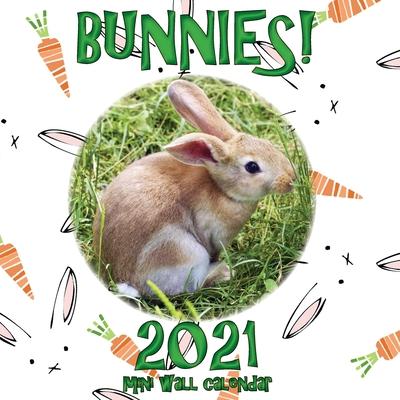 Bunnies! 2021 Mini Wall Calendar Cover Image