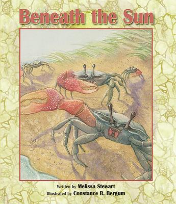 Beneath the Sun Cover