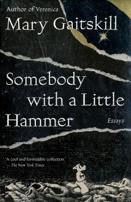 Somebody with a Little Hammer: Essays Cover Image