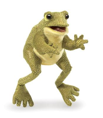 Funny Frog Puppet Cover Image
