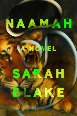 Naamah: A Novel Cover Image