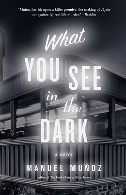 What You See in the Dark Cover