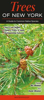 Trees of New York: A Guide to Common Native Species Cover Image