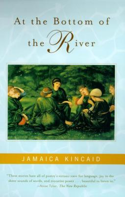 At the Bottom of the River Cover Image