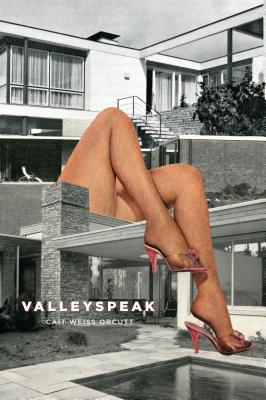 Cover for Valleyspeak