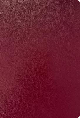 Cover for KJV Super Giant Print Reference Bible, Burgundy Imitation Leather