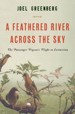 A Feathered River Across the Sky Cover