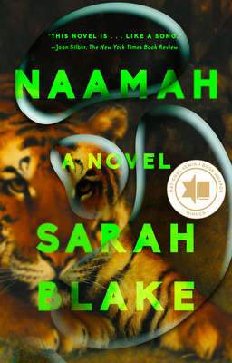 Naamah: A Novel cover
