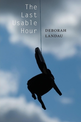 The Last Usable Hour Cover