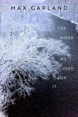 Cover for The Word We Used For It (Wisconsin Poetry Series)