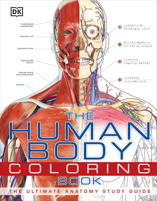 The Human Body Coloring Book: The Ultimate Anatomy Study Guide Cover Image